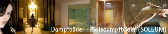 www.dampfbad.at - Dampfb�der